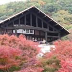 天王山山麓周遊コース