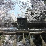 椎尾神社(しいおじんじゃ)西観音寺跡