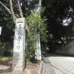 天王山ハイキングコース(長岡京下山コース)