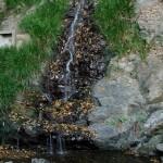 水無瀬の滝コース