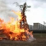 1月14日(火)桜井レンゲの里で「どんど焼」