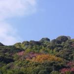 天王山ハイキングコース全面開通しました。