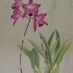 小企画展「蘭花譜」開催 大山崎町歴史資料館 2016年5月3日(火)~22日(日)