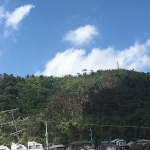台風21号の影響により天王山ハイキングコースを全面通行禁止に 9月4日〜未定