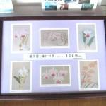 蘭花譜と加賀正太郎