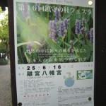 2013年6月16日「第16回 鎮守の社フェスタ」離宮八幡宮にて開催