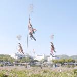 「え?JR島本駅と三小の間の田んぼがなくなるの?!」JR島本駅西側の田んぼの開発に関しての署名活動のお知らせ