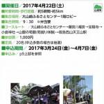 観光あるき「天王山の歴史散歩と筍掘り体験」2017年4月22日(土)に開催